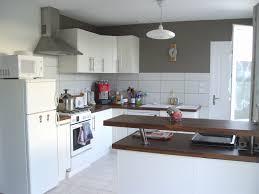 peinture element cuisine crédence de cuisine inspirant meuble cuisine jardin et cuisine