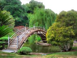 Huntington Botanical Garden by Huntington