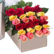 Roses In A Box 2 Dozen Assorted Color Roses In A Box Send To Philippines Roses