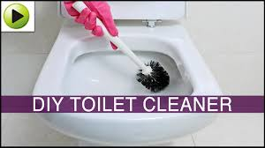 Acid For Bathroom Cleaning Diy Toilet Cleaner Youtube