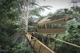 Forest Render Gabon Forest Walkway Henry Fagan U0026 Partners