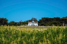 pacific grove chamber of commerce beaches things to do in