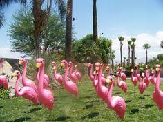 don featherstone the who invented the plastic flamingo 1957