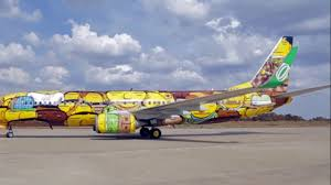 beautiful painted planes special painted planes