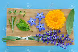 edible blue flowers summer herbs and edible flowers on wooden plate on blue background