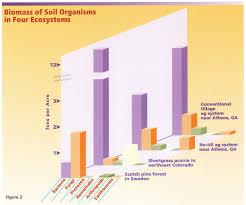 food web u0026 soil health nrcs soils