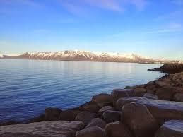 hilton hotel reykjavik iceland review halimabobs