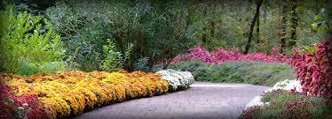 botanical gardens in arkansas university of arkansas botanical
