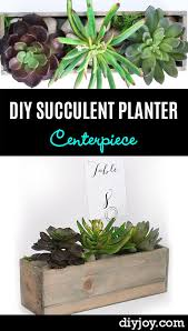 How To Make A Succulent Planter 32 Super Creative Diy Succulent Crafts And Diys For You To Try