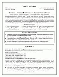 Achievements In Resume Examples by Executive Resume Examples 13 Cfo Resume Sample Manufacturing