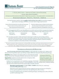 Sales Executive Resume Format Resume Writing Services In Princeton Nj
