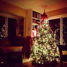 my christmas where did the christmas tree tradition come from