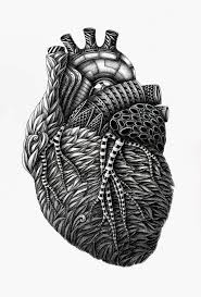 meticulously detailed drawings of surreal human anatomy