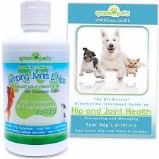 best joint supplement the best joint supplement for dogs keeping your dog mobile