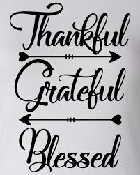 thankful grateful blessed thanksgiving day raglan juniors baseball