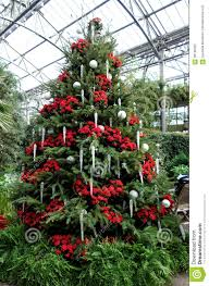 Red And Silver Christmas Tree Decorations Christmas Decorations In The Greenhouses Of Longwood Gardens Stock