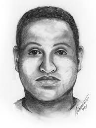 police woman robbed carjacked in hendersonville