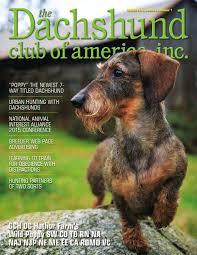 dachshund club of america spring 2016 by lynne dahlen issuu