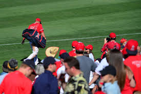mlb spring training 2017 get to know the angels spring training