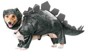 pets costumes halloween the halloween machine not just halloween costumes and accessories