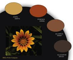 autumn paint colors home spice for your space nw rugs u0026 furniture