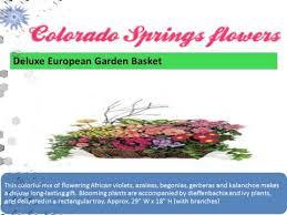 flower shops in colorado springs colorado flowershop