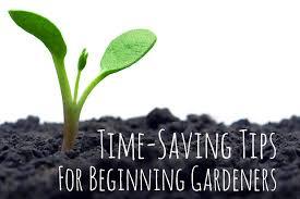 gardening tips tips u0026 time savers for beginning gardeners how to organize