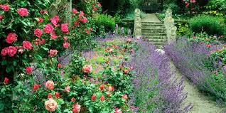 Flower Garden Ideas Pictures 9 Cottage Style Garden Ideas Gardening Ideas