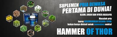 3 manfaat utama obat hammer of thor asli italy