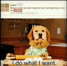 Dog Barking Meme - dog barking meme slapcaption com lol pinterest dog barking