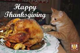 jon jones wishes you all a happy thanksgiving page 4 sherdog