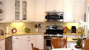succulent high end kitchen cabinets tags cabinet kitchen how to