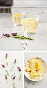 French Cocktail Party - the 25 best ideas about french 75 cocktail on pinterest french