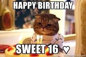 Sweet 16 Meme - happy birthday sweet 16 birthday cat meme generator