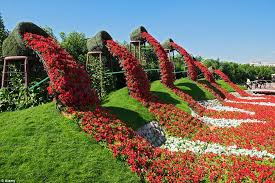 largest flower in the world rainbow coloured oasis with 45m flowers is in the middle of a
