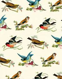bird wrapping paper gift wrap gift wraps birds birds museums