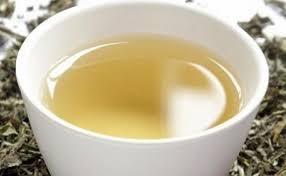 Teh Putih 10 manfaat dan khasiat teh putih untuk kesehatan khasiat