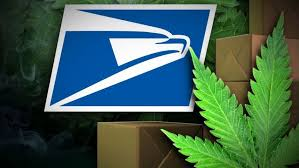 former usps station manager gets 8 years for distributing