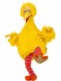 big bird from u s kid s tv educational program sesame