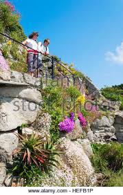 sub tropical plants in the gardens of the famous out door minack