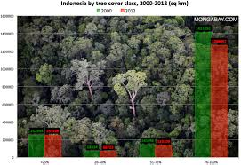 Google Maps Virginia by Deforestation Accelerates In Indonesia Finds Google Forest Map