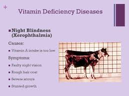 Vitamin A Deficiency Causes Night Blindness Nutritional Diseases In Livestock Ppt Online Download