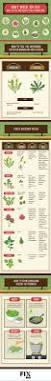 best 25 garden weeds ideas on pinterest weeds in lawn killing