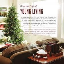 home interior catalog 2015 2015 catalog by living essential oils issuu