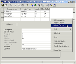 Delete From Table Sql Mysql Net With C Lesson 05 The Columns Of A Table