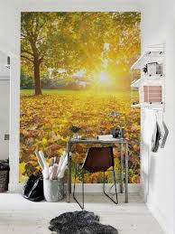 autumn themed wall murals collect this idea autumn wall mural by pixers