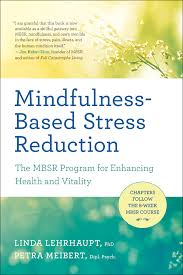 mindfulness based stress reduction the mbsr program for enhancing