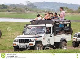 safari jeep safari off road jeep with family visitors minneriya sri lanka