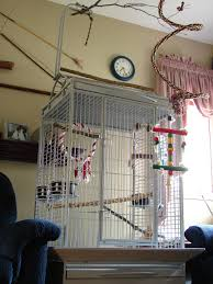 Home Interior Bird Cage File Birdcage Jpg Wikimedia Commons