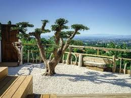 bureau d ude paysage lyon architecte paysagiste lyon terrasse paysagiste ctb bilalbudhani me